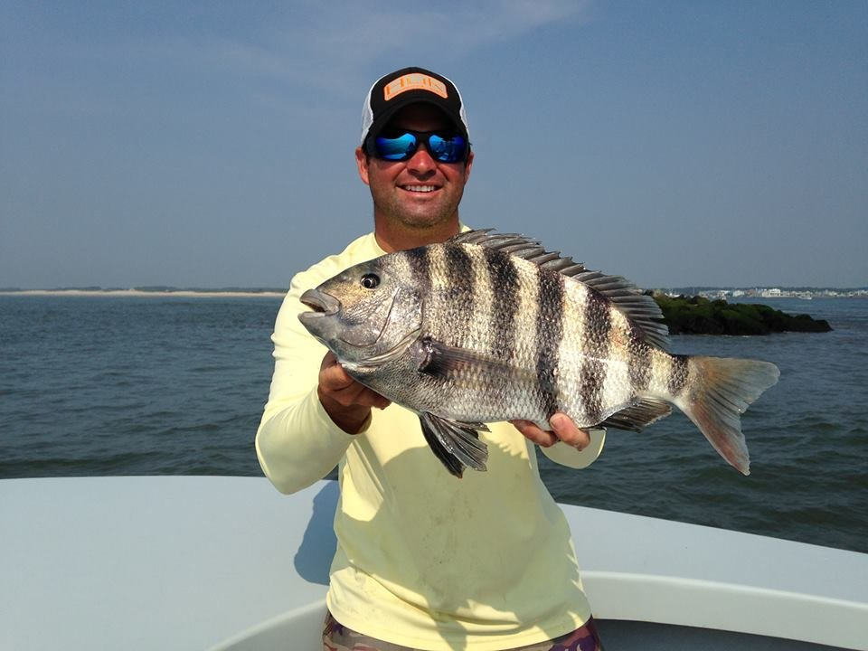 Ocean city guide service fishing reports news ocean for Ocean city fishing report