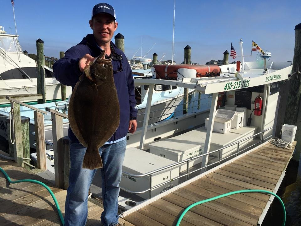 Bay bee flounder fishing ocean city md fishing for Surf city fishing report
