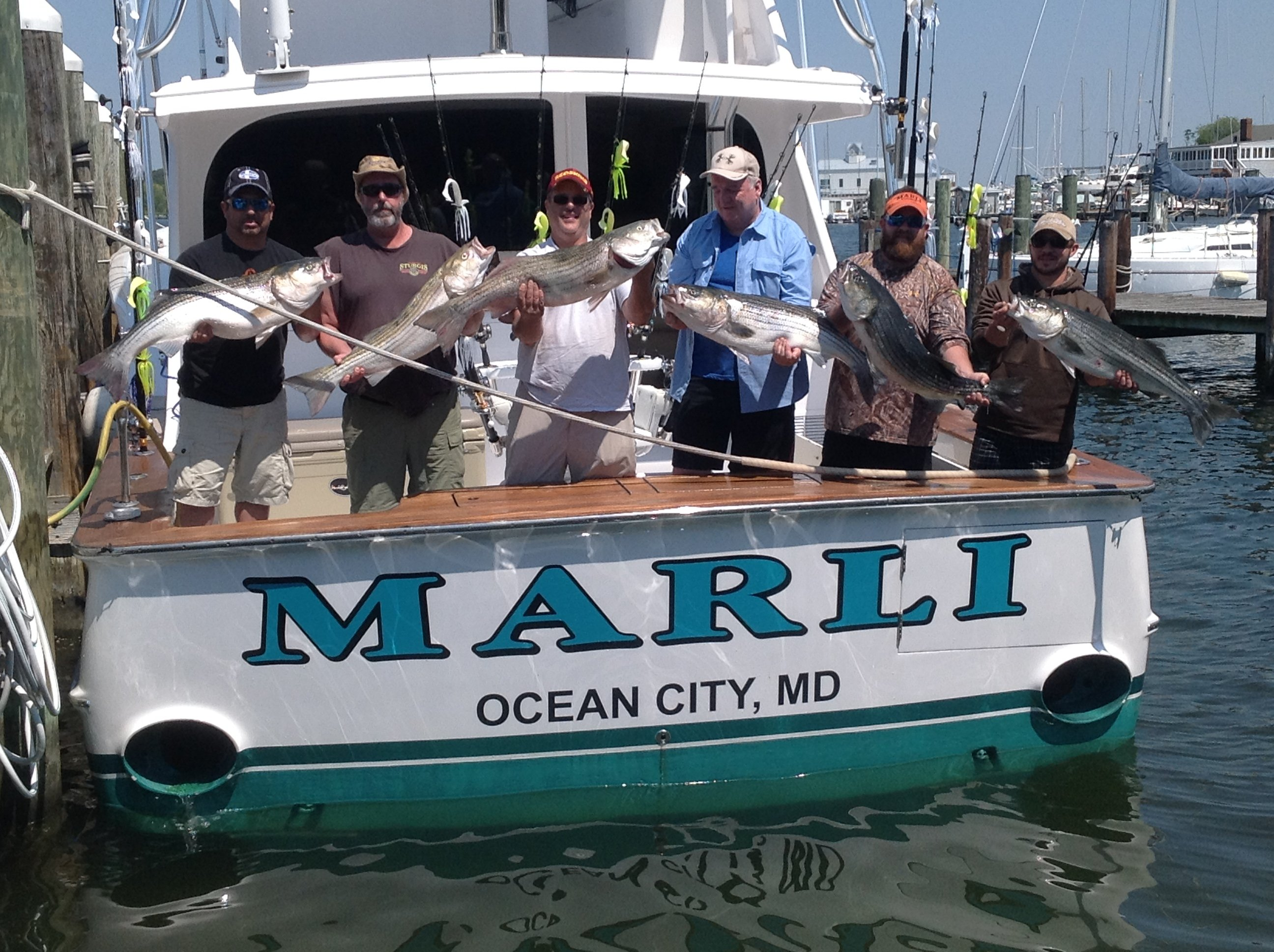 Slaying rockfish ocean city md fishing for Ocean city md fishing