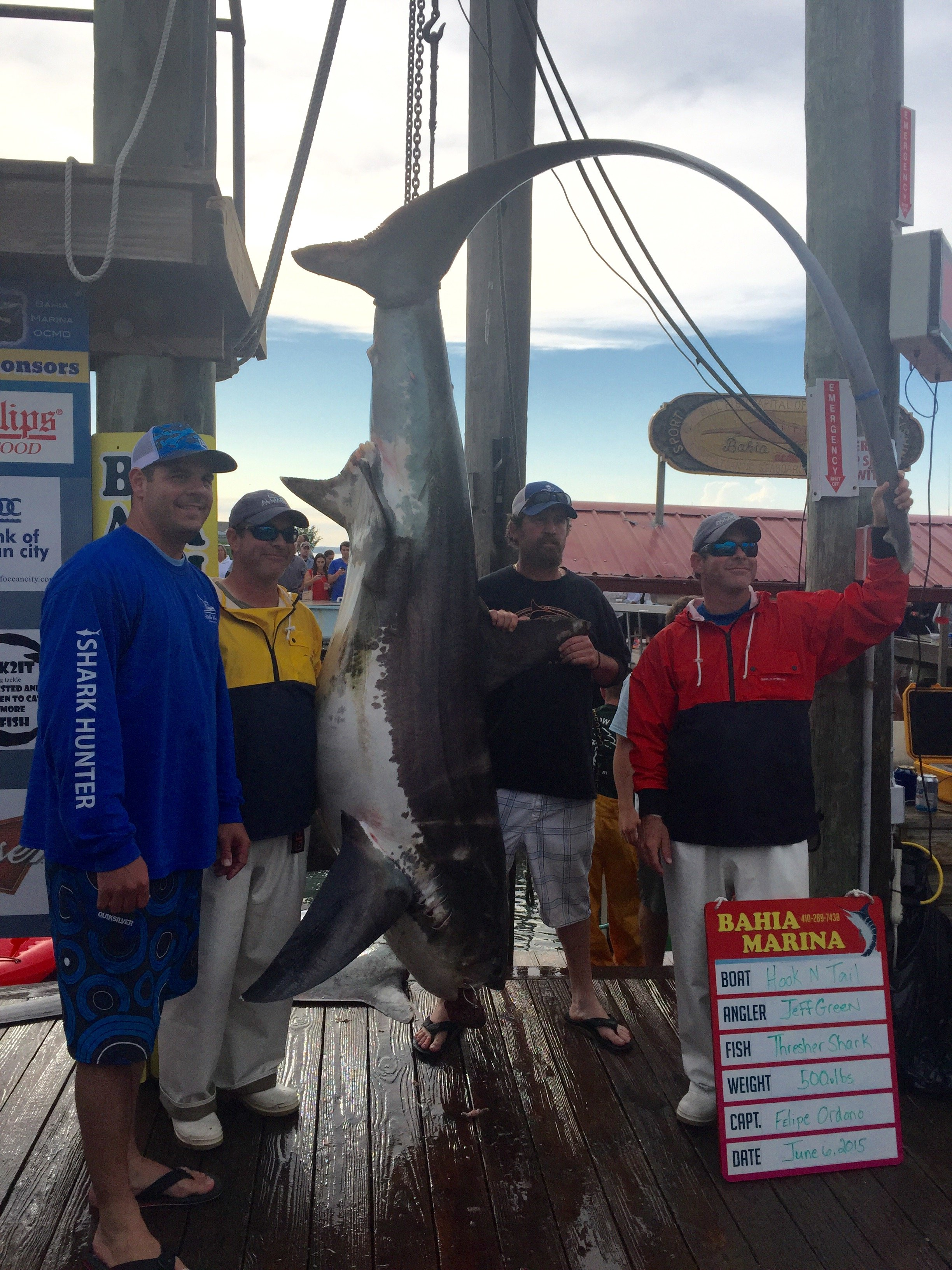 Mako mania day 2 scales thresher sharks ocean city md for Fishing report ocean city md