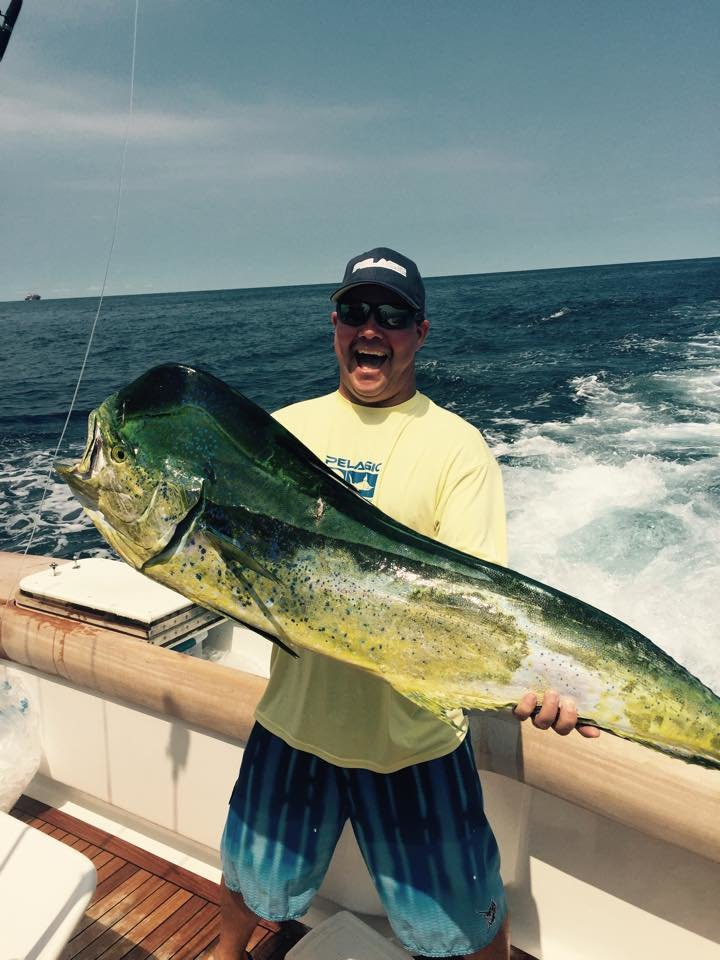 My Monster Mahi