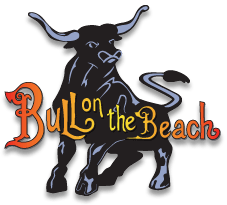Bull on the Beach