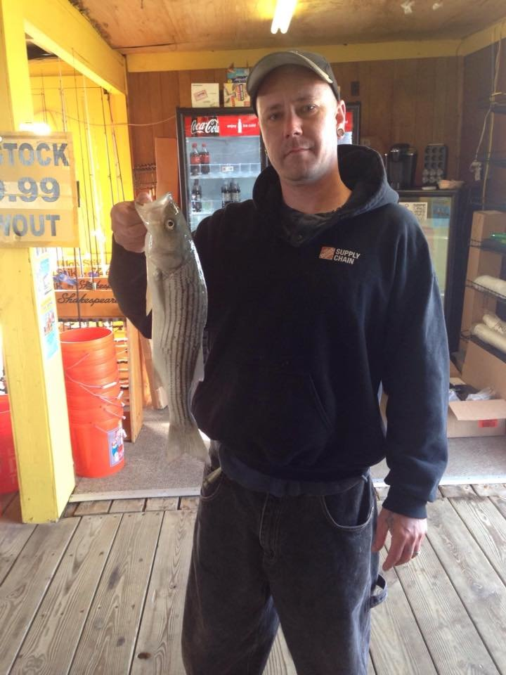 Stripers at the Oceanic Pier