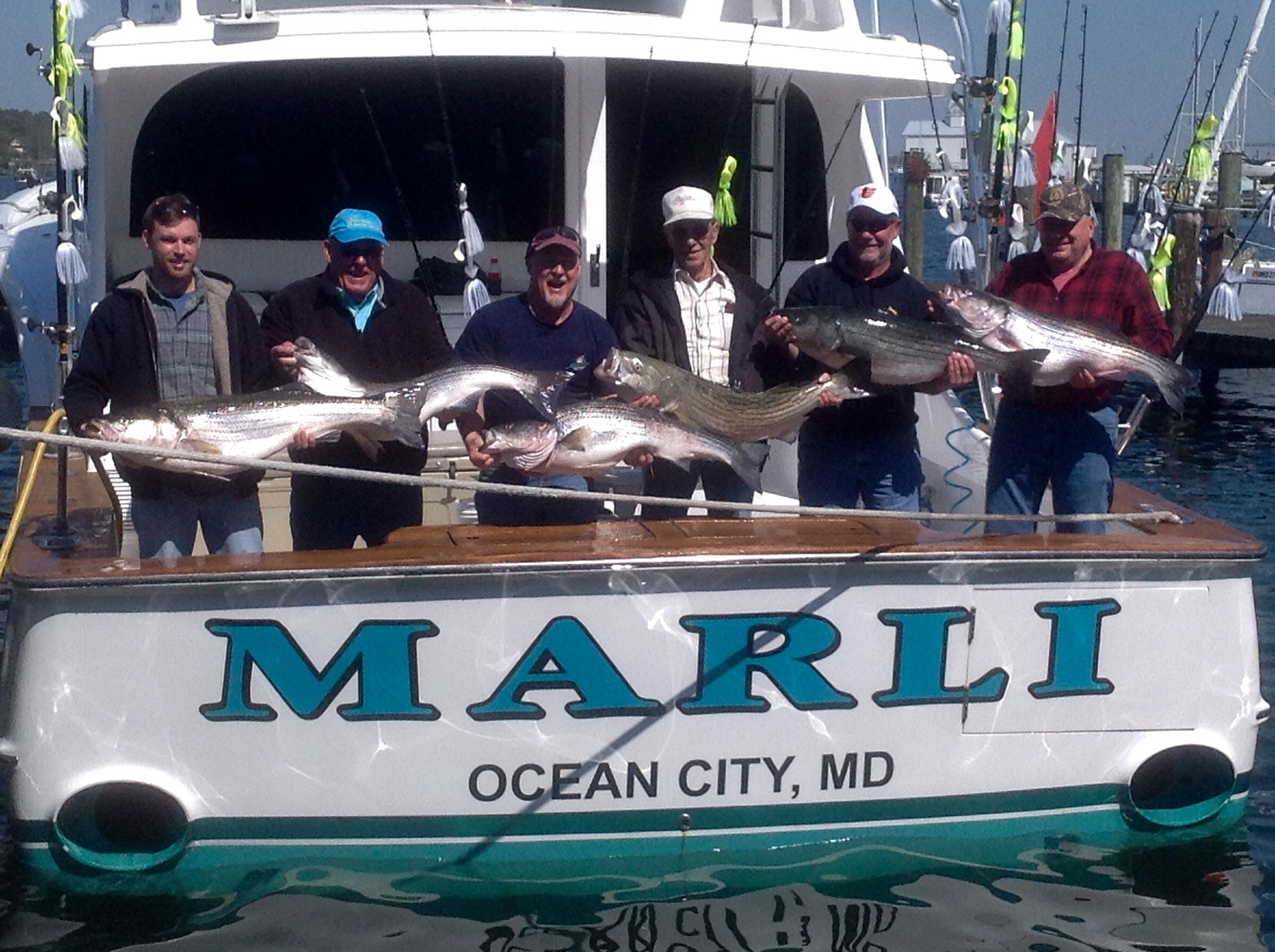 Trophy Rockfish in the Chesapeake and Flounder in OC