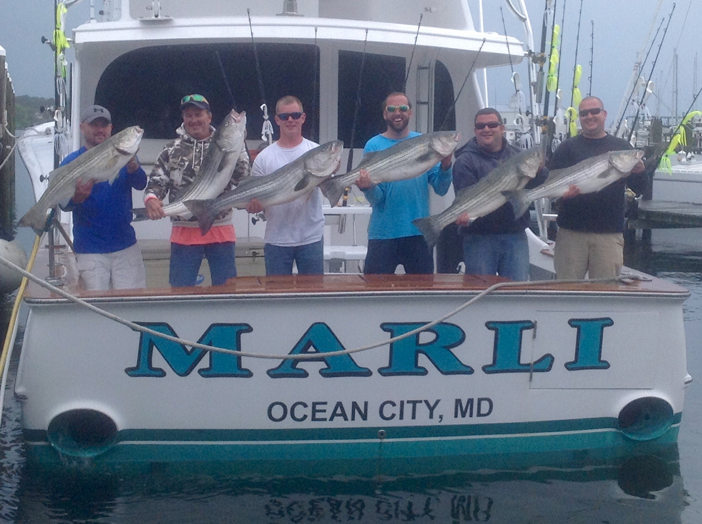 Marli is on the rockfish ocean city md fishing for Fishing in ocean city md