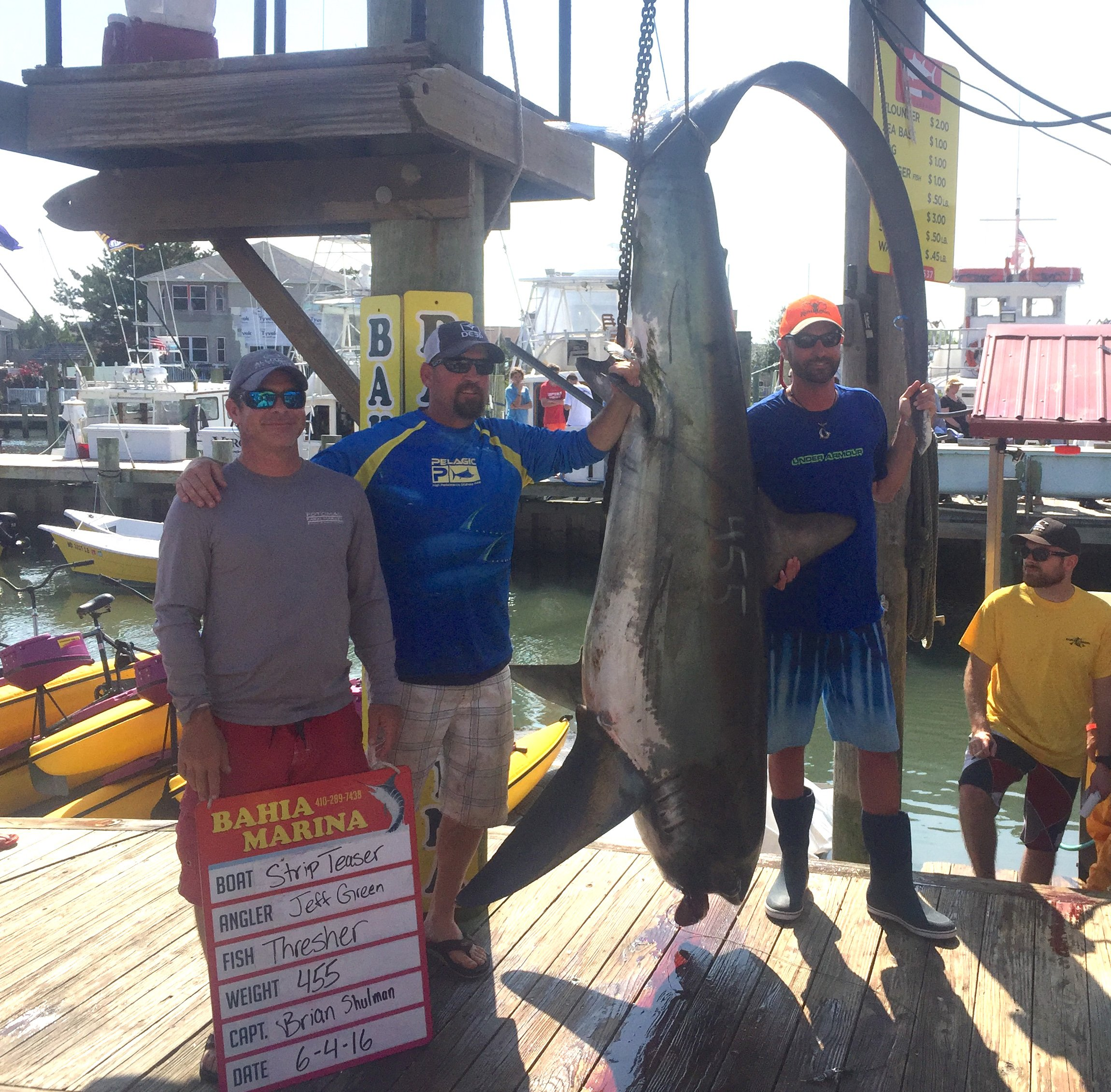 400+ Pound Thresher Shark and Flounder in the Bay