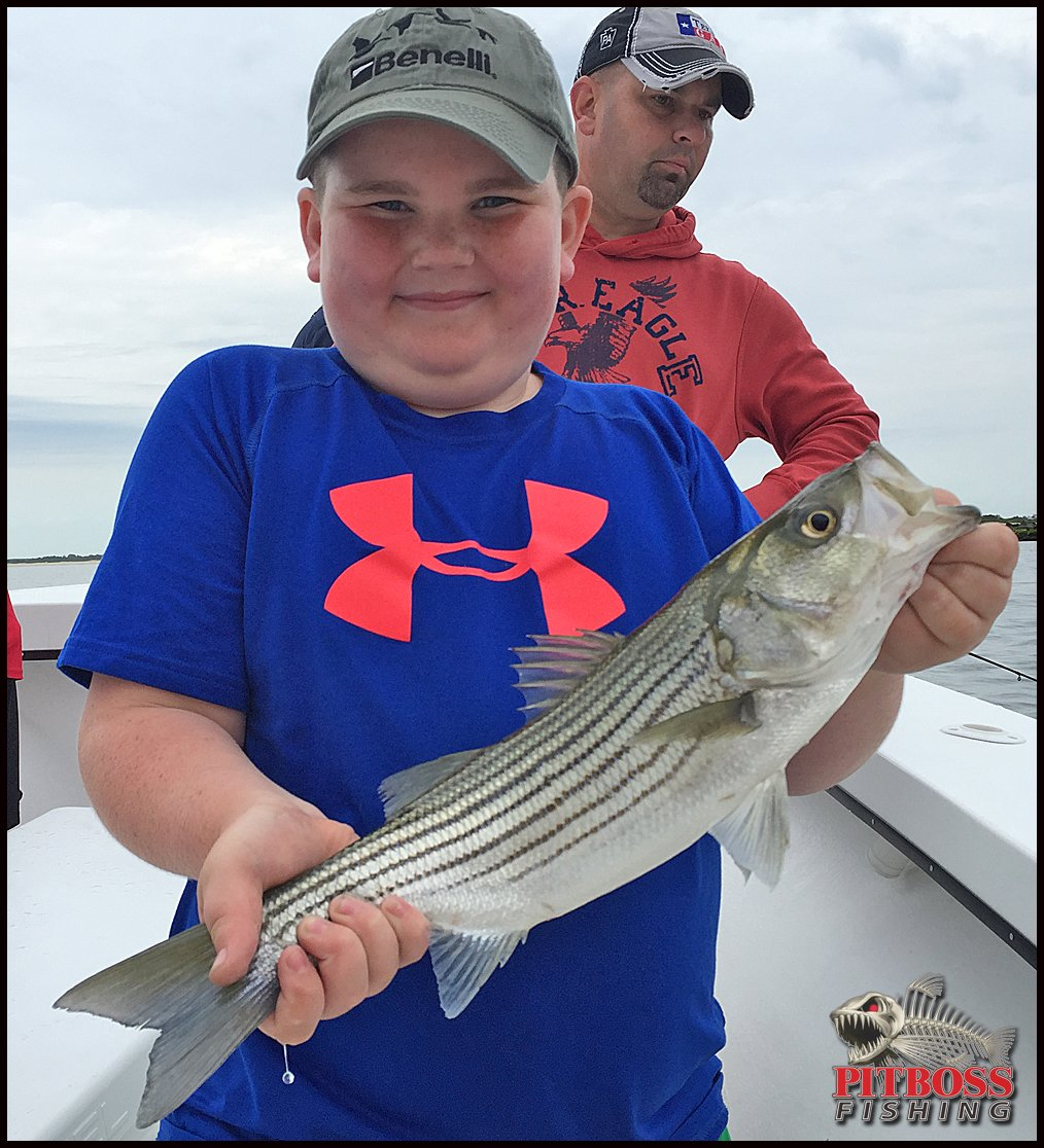 Rockfish bluefish and she said yes ocean city md for Fishing report ocean city md