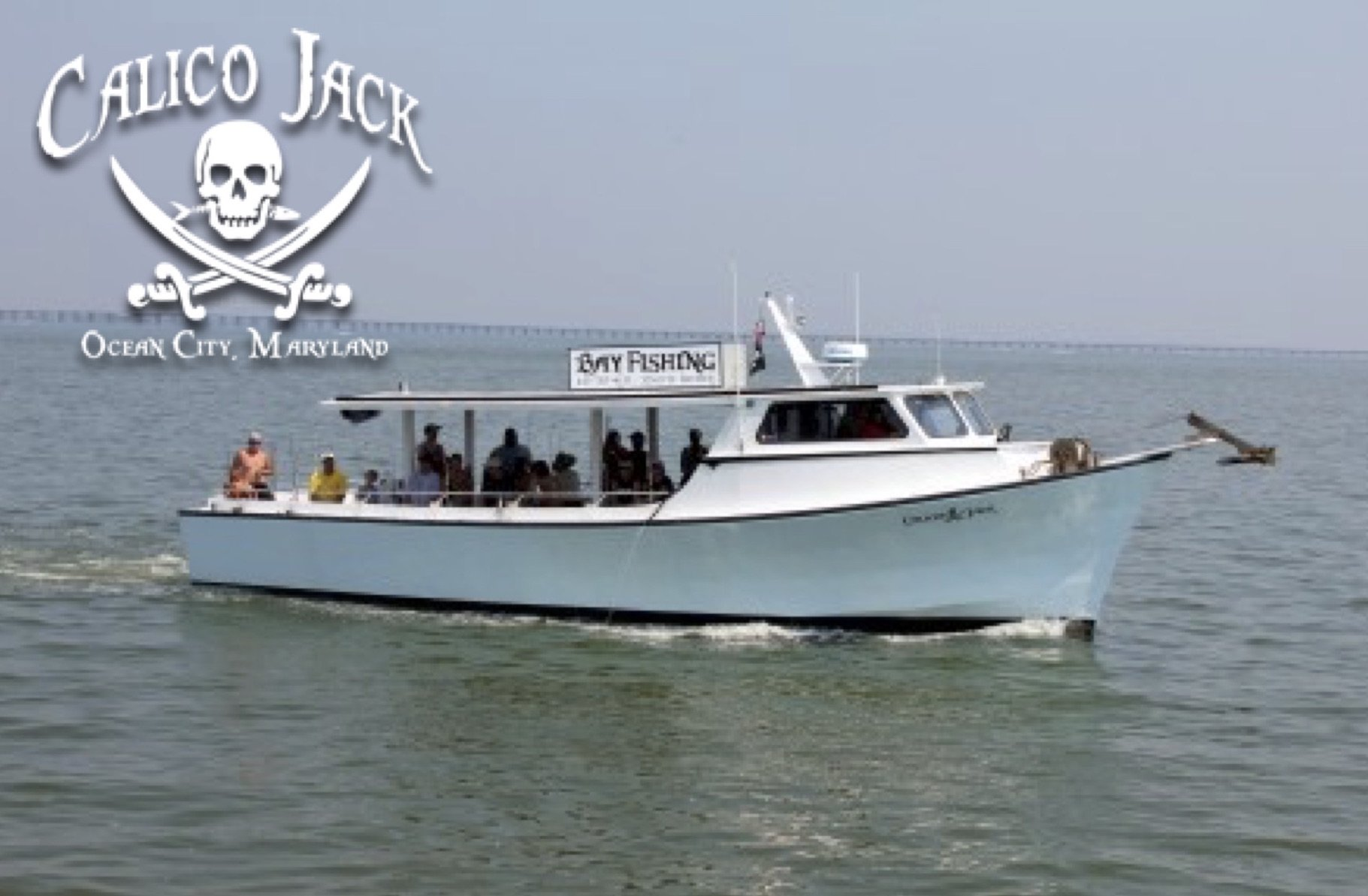 Calico jack fishing reports news ocean city md tournaments for Ocean city fishing charters