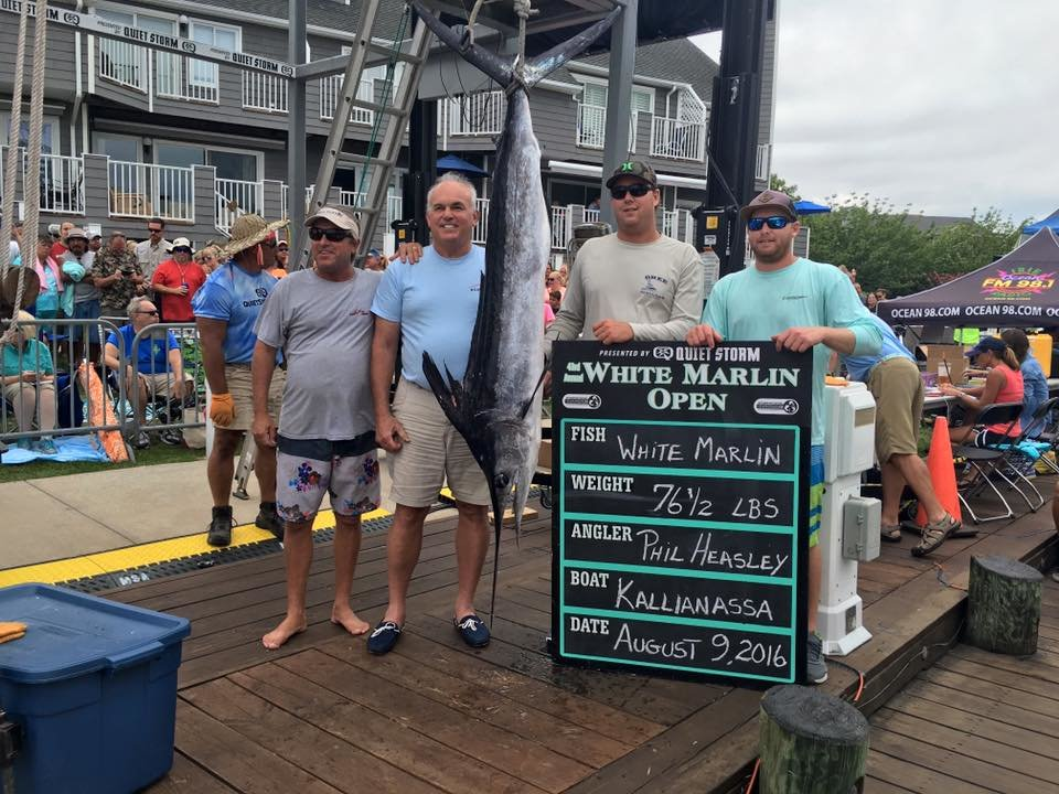 First Qualifying White Marlin for the 43rd Annual White Marlin Open