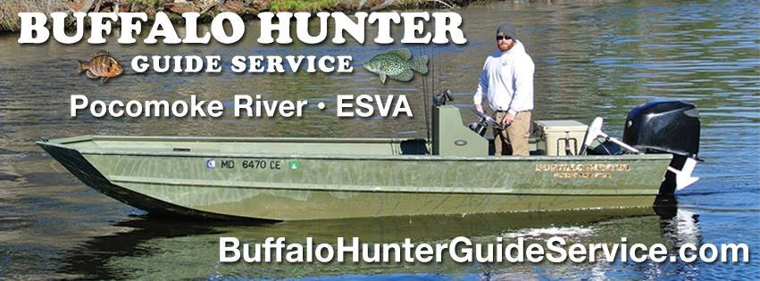 Buffalo Hunter Guide Service