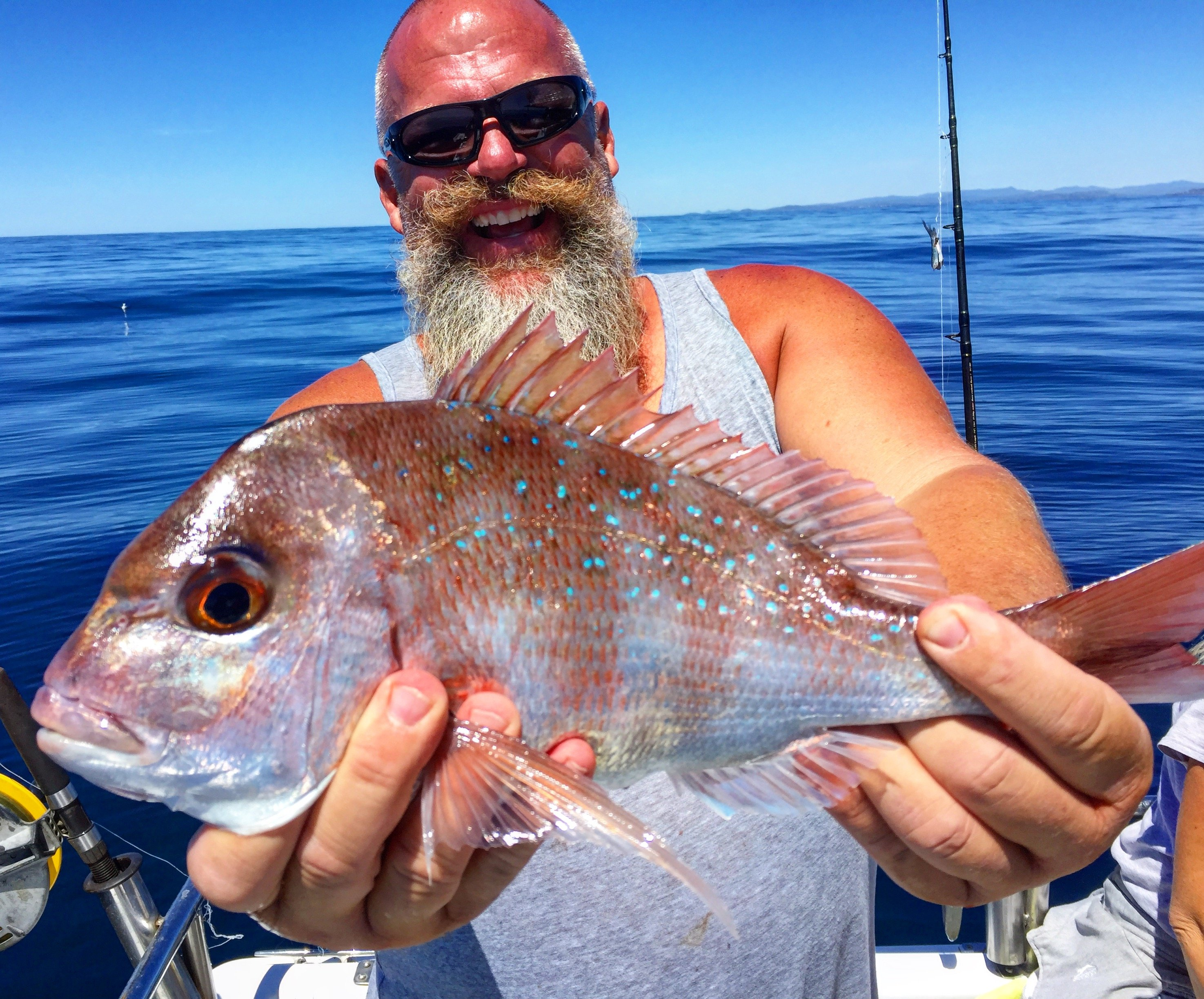 Pitboss down under ocean city md fishing for Ocean city fishing report