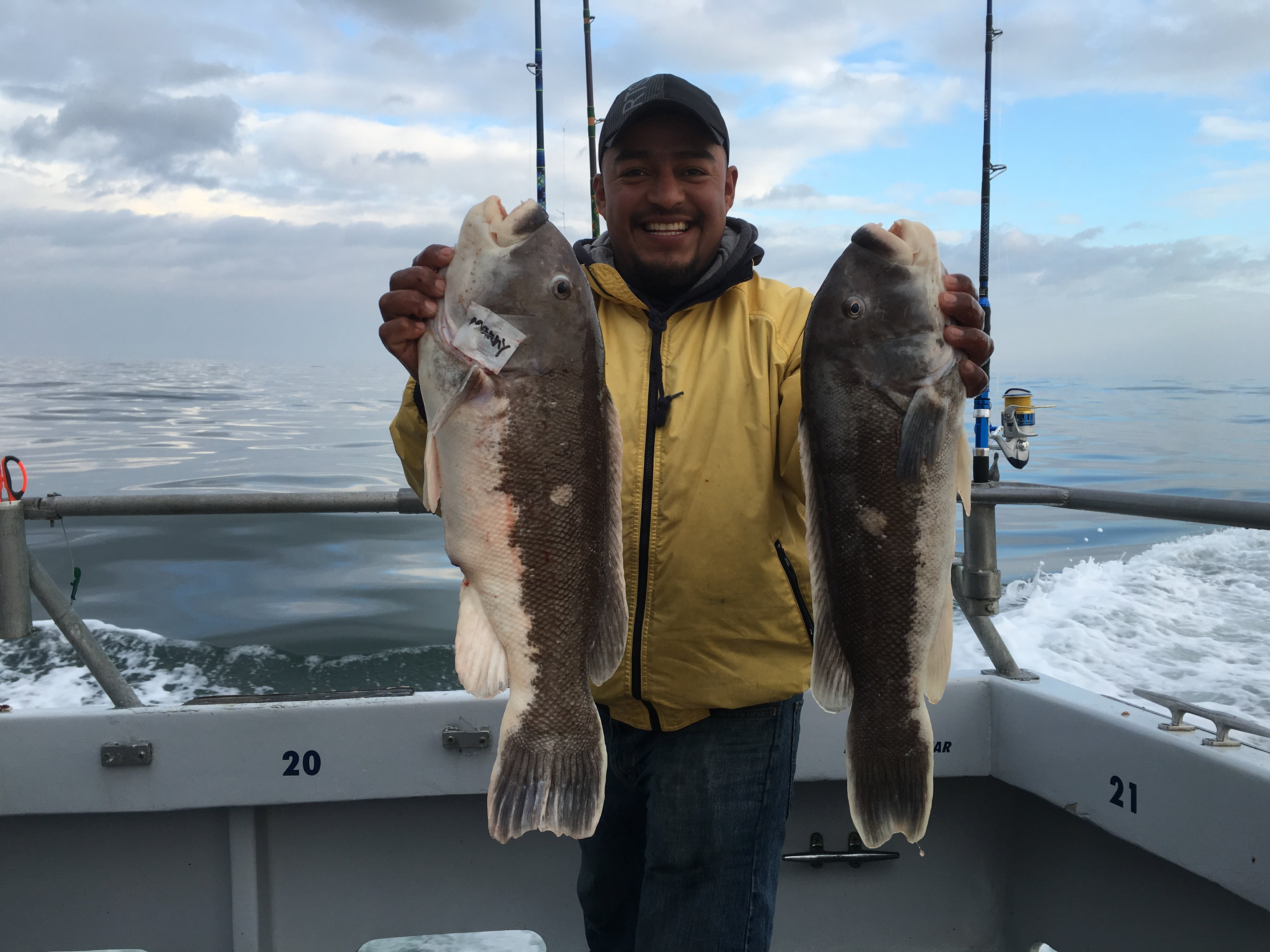 Nice Pair of Tautog