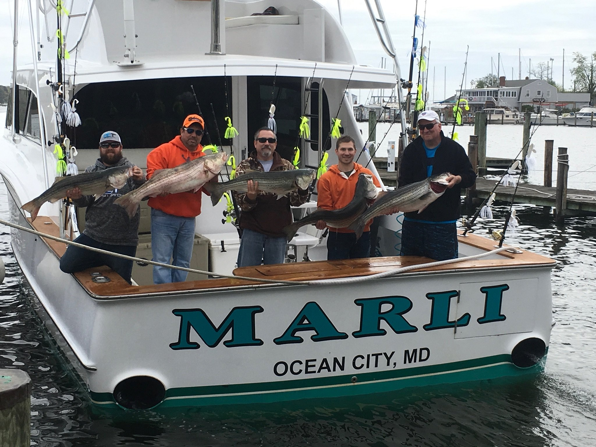 Stripahs ocean city md fishing for Ocean city fishing charters
