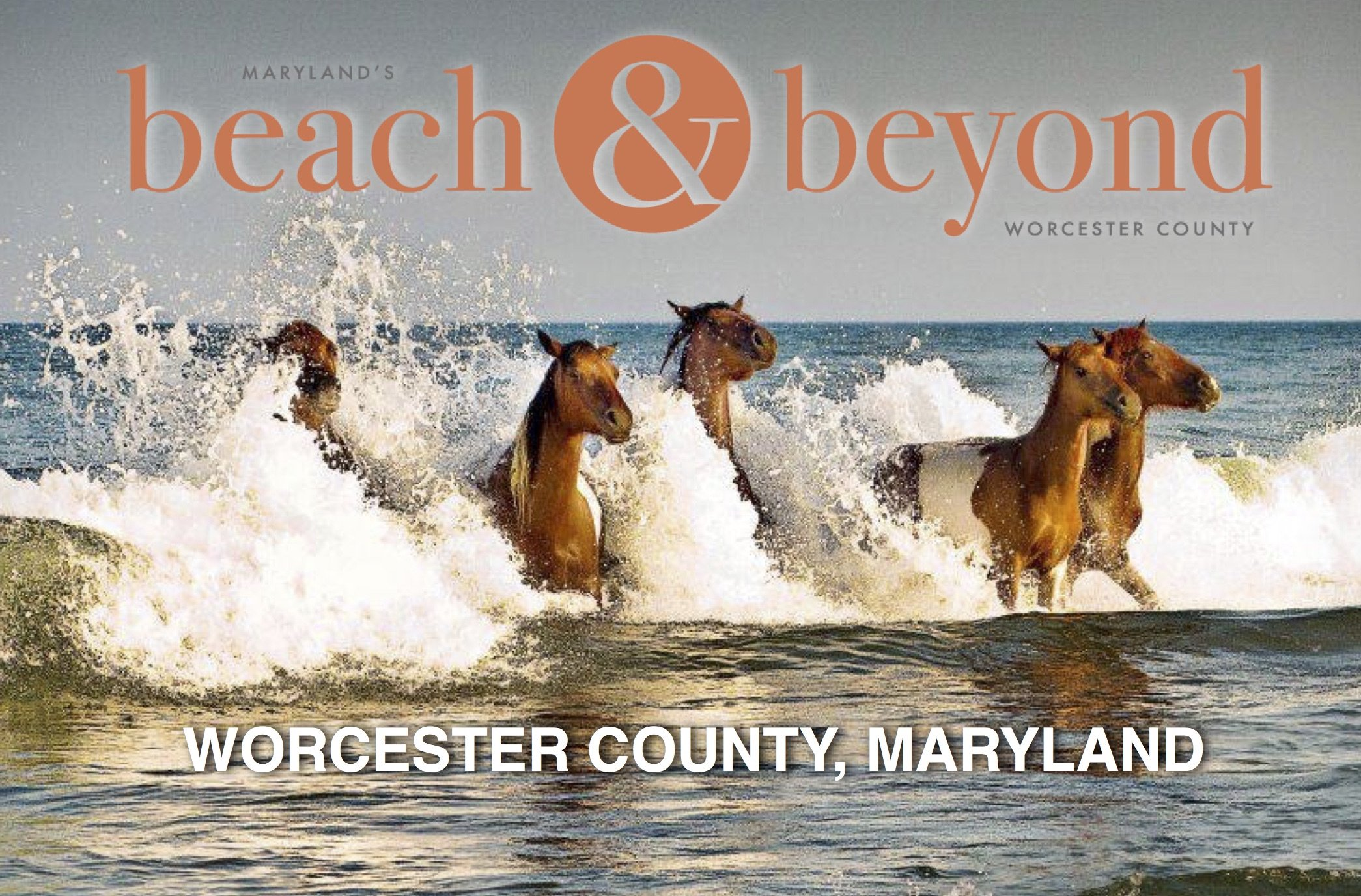 Maryland's Beach & Beyond