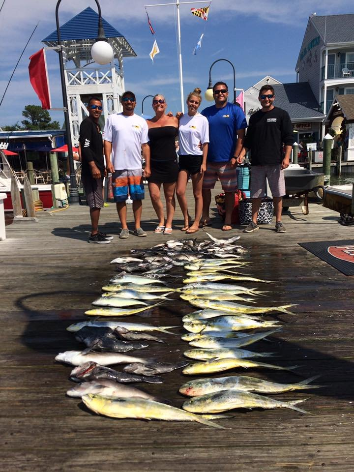 Decent day ocean city md fishing for Bass fishing in maryland