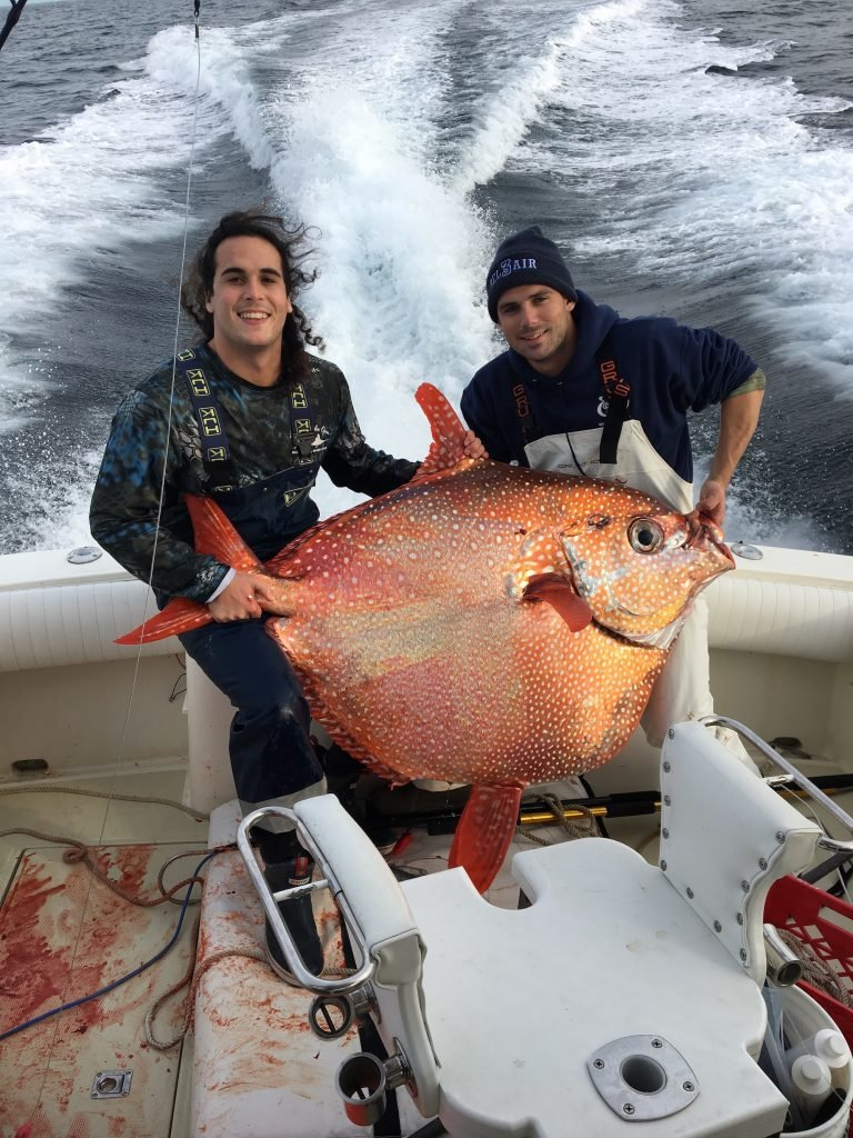 Lightning Strikes Twice Primary Search Catches Another Opah Out Of Ocean City Md
