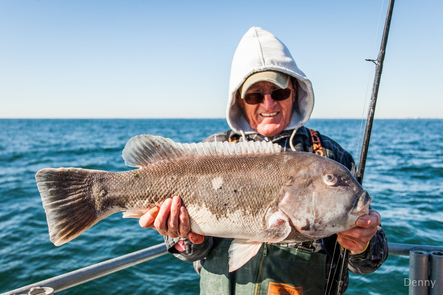 New MD Tautog Regulations for 2018