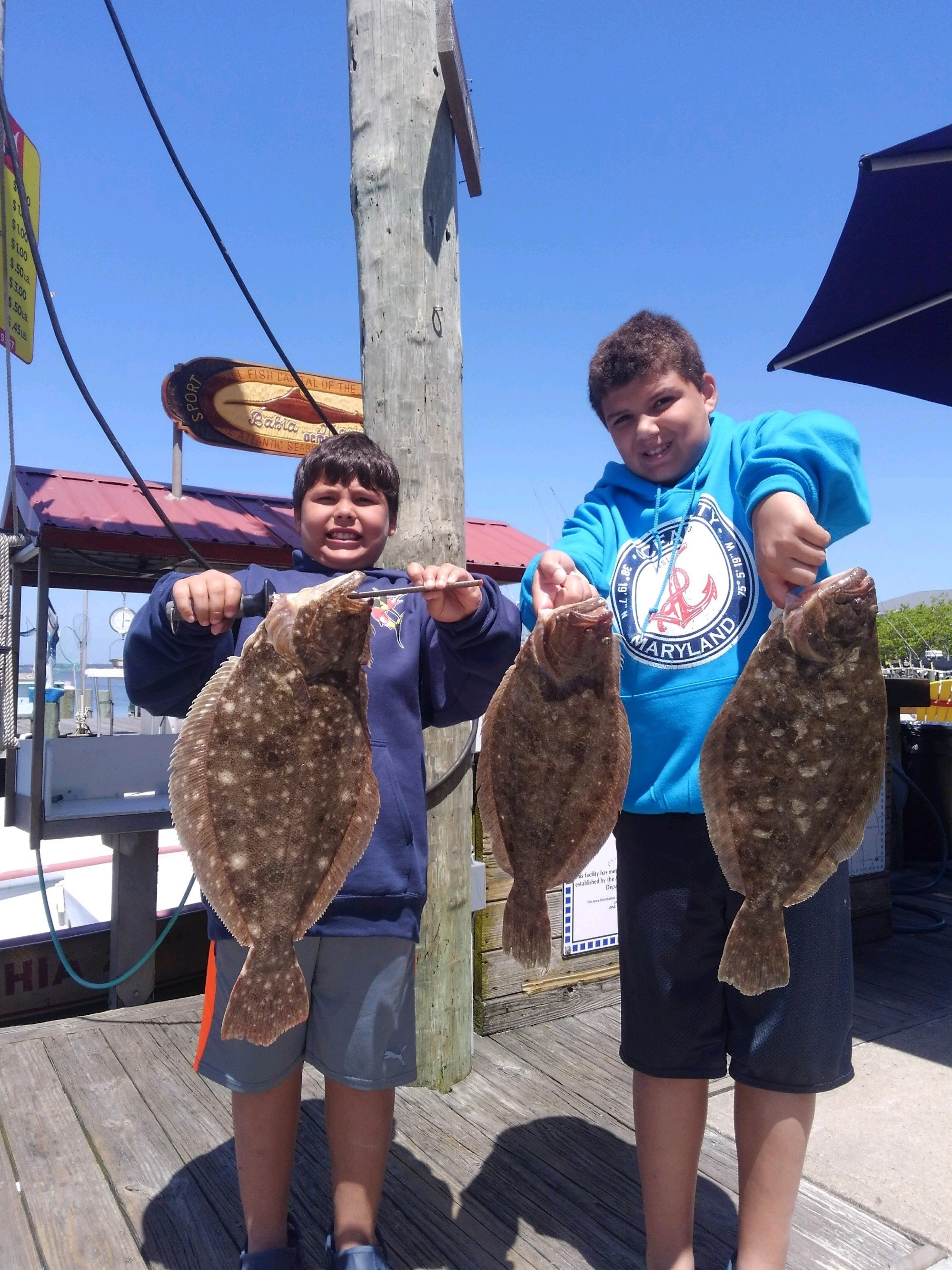 Flounder and a Couple Triggerfish