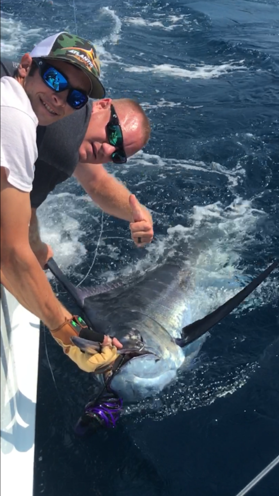 Not One, Not Two, But Three Blue Marlin