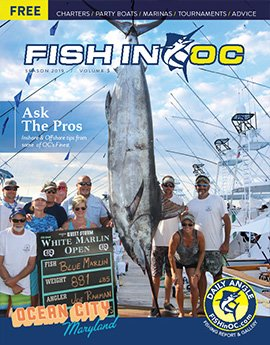Fish in OC Fishing Reports & News Ocean City Maryland