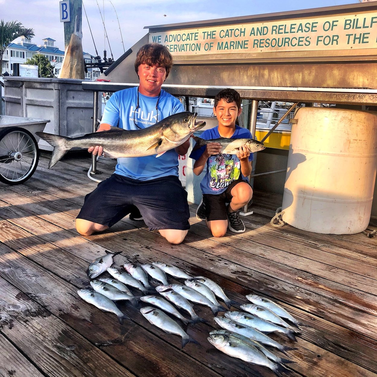 Triggers and Bluefish